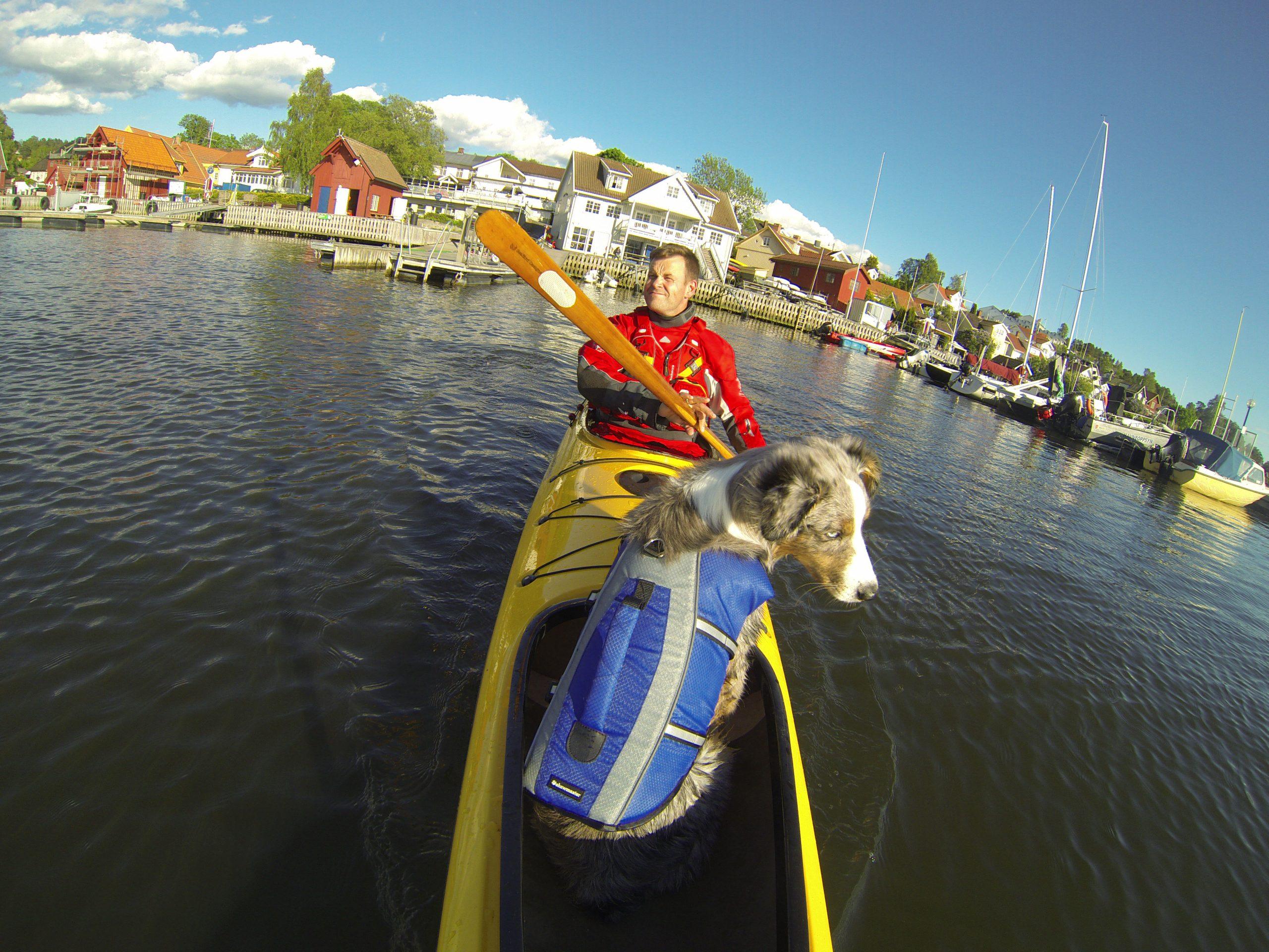 Seabird Nansen er en kajakk spesiallaget for å ha med hund. Miniaussien Balder er 44 cm høy og drøyt 13 kilo tung.