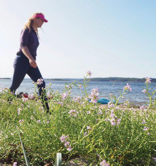 Rett fram: Tine Raisbæk er selv et rett-fram-menneske og setter stor pris på at andre møter henne med samme ekte innstilling. Når deltakerne ber om hjelp, har Tine alltid gode råd.